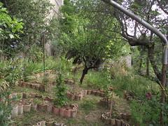 Orto botanico del Sannio