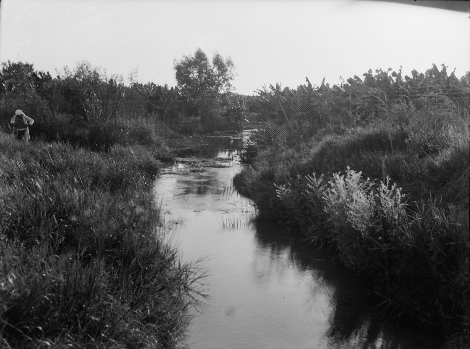 02. Рас-эль-Айн. Исток реки Ауя.