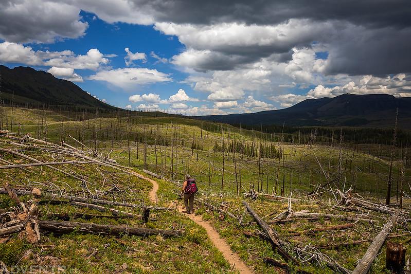 Carhart Trail