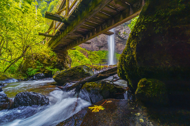 Latourell Falls II [Explore 7/6/20]