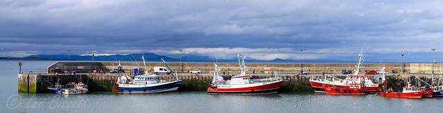 Clogherhead Port oriel