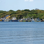 Trincomalee fish port