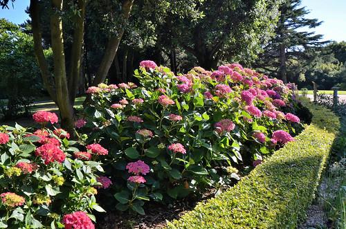 Granville (Manche) - Jardin Christian-Dior | Granville (Manc… | Flickr