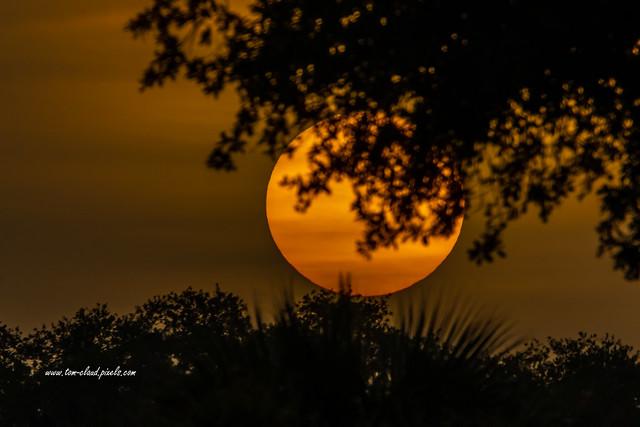 Sahara Dust Sunrise
