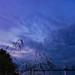 Evening sky over the Daugava River