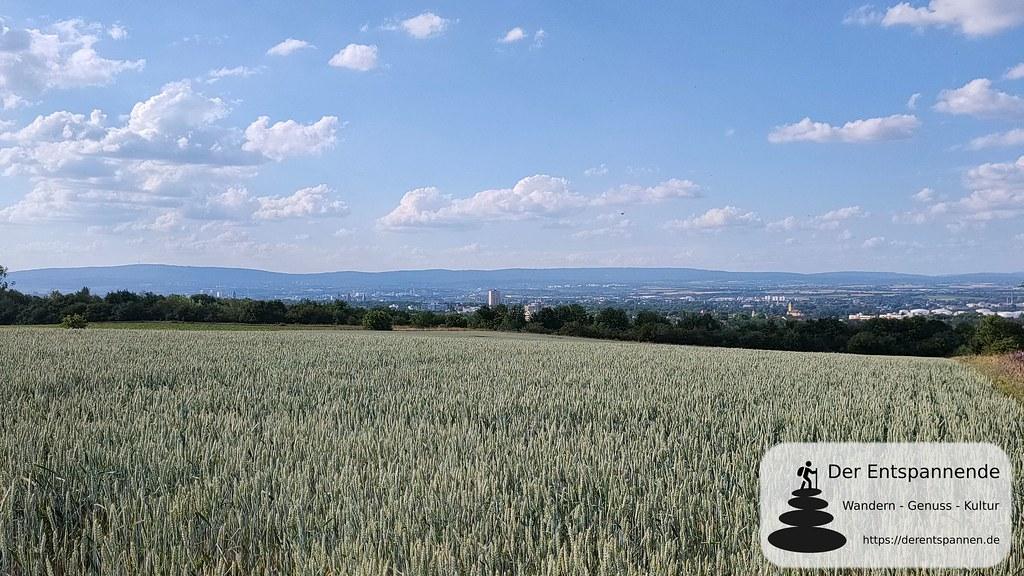 Blick über Mainz zum Taunus