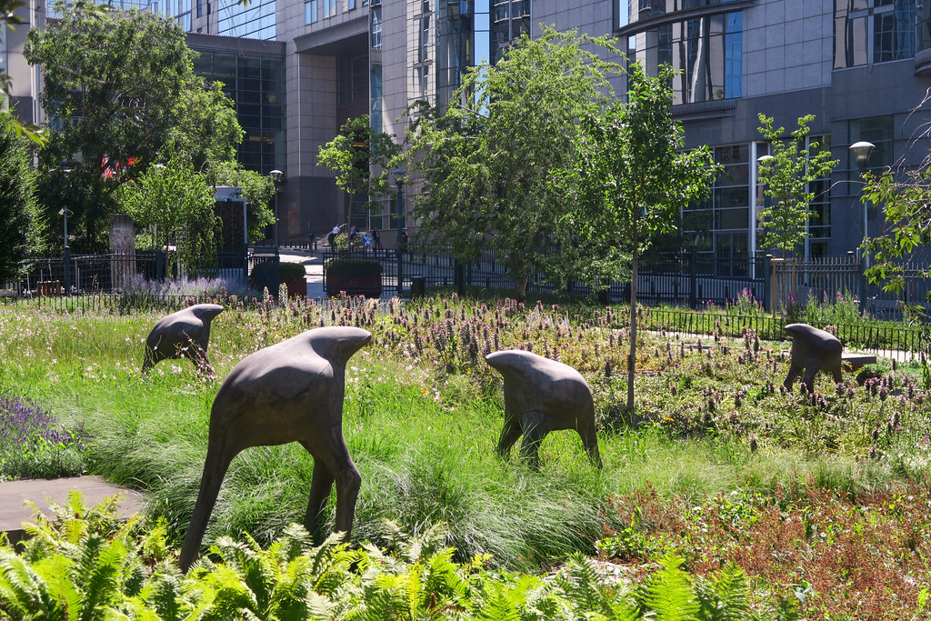 Ostrich sculptures at the back of EU Parliament