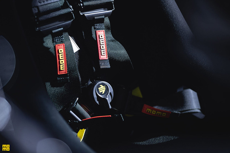 Kelly-Moss-Porsche-911-Safari-23