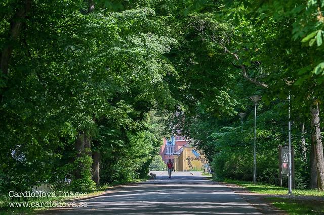 Folkparken in Norrköping, Sweden