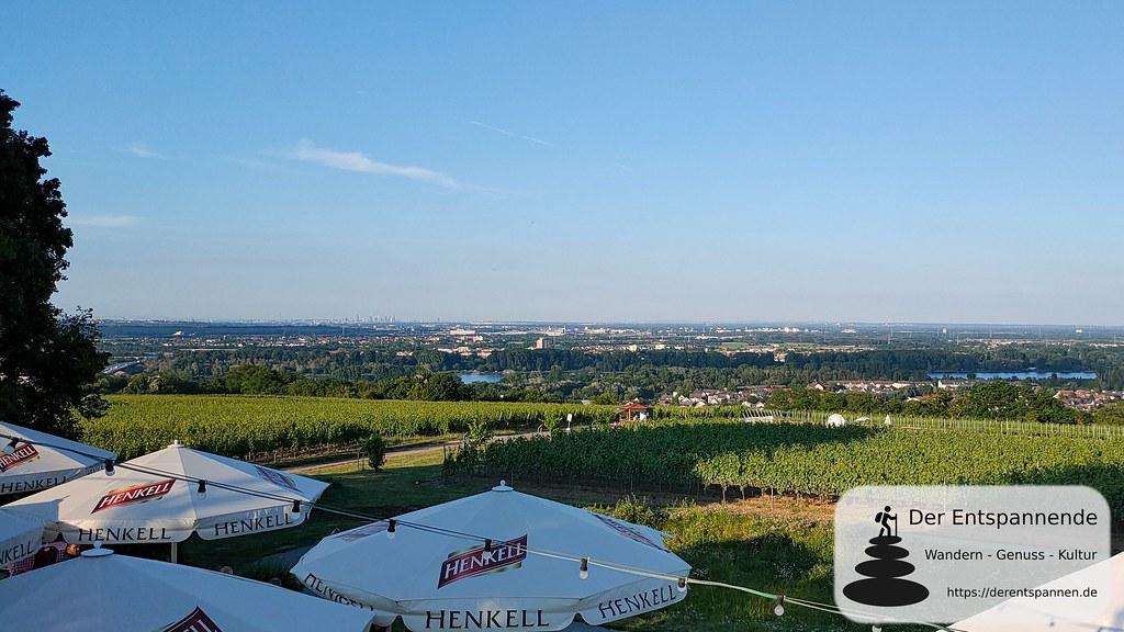 Blick über den Hofgarten ins Rheintal