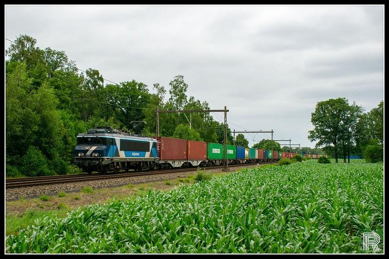 TCS 101001 // Bosweg, Notter - Overijssel // 04-07-2020