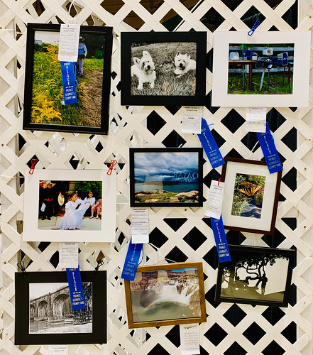 maryland prince george's county fair countyfair upper marlboro countyfairorg blue ribbons red first place second winner winning photo contest