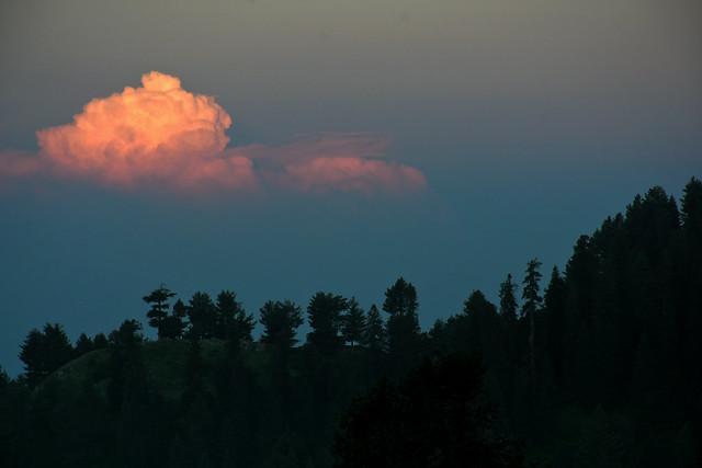 Flamboyant Sunset