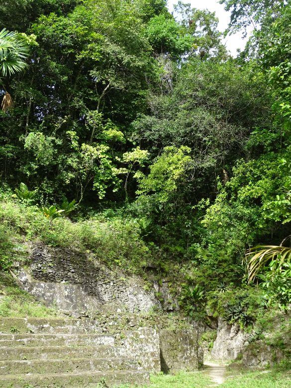 DSC01160GuatemalaFloresParqueNacionalTikal