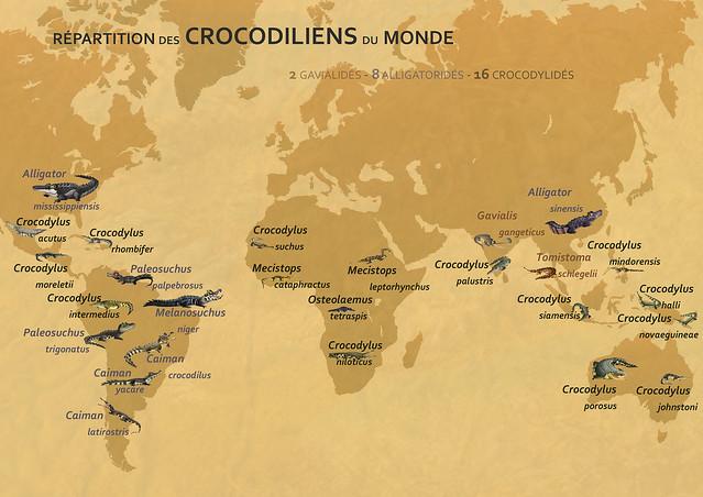 crocodilens