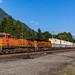 BNSF Train - Stevens Pass