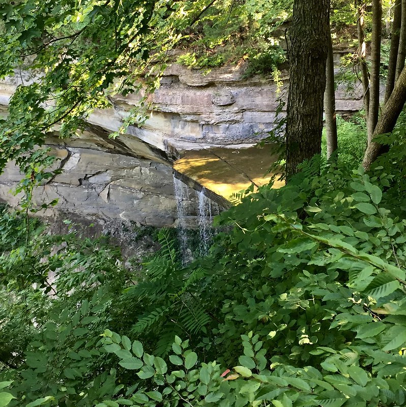 Tunnel Falls off Trail 5 #cliftyfallsstatepark #shirleyhikes #seenonmyhike