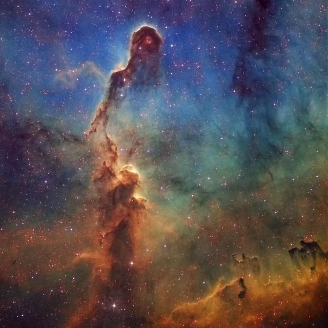 The Elephant's Trunk Nebula