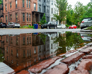 Reflection in a Puddle on Carroll Street - Horizontal