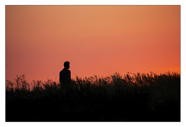 Man in Field at Sundown (Portrait)