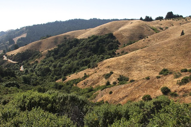 Hillsides opposite Windy Hill