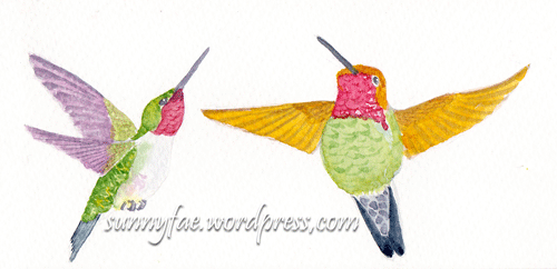 hummingbird colour tests 1+2
