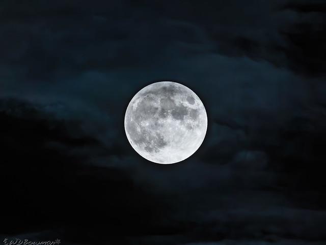Thunder Moon Taking (Slight) Umbrage