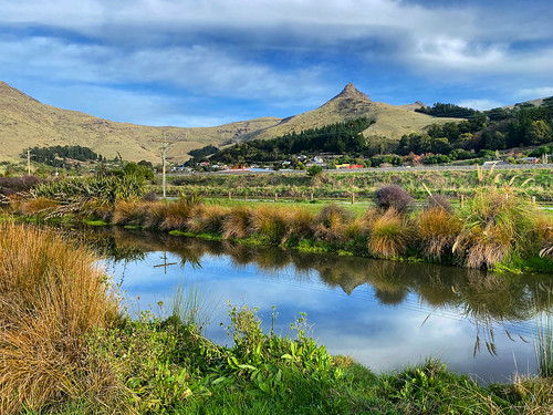 My little piece of paradise. The regular dog walk in Ferrymead | by kevinprince3