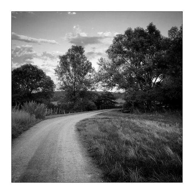 Le chemin de Vernois