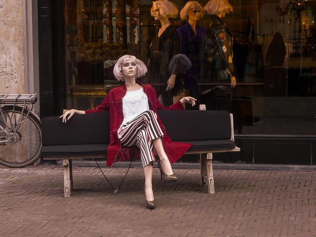 Still Life in The Hague