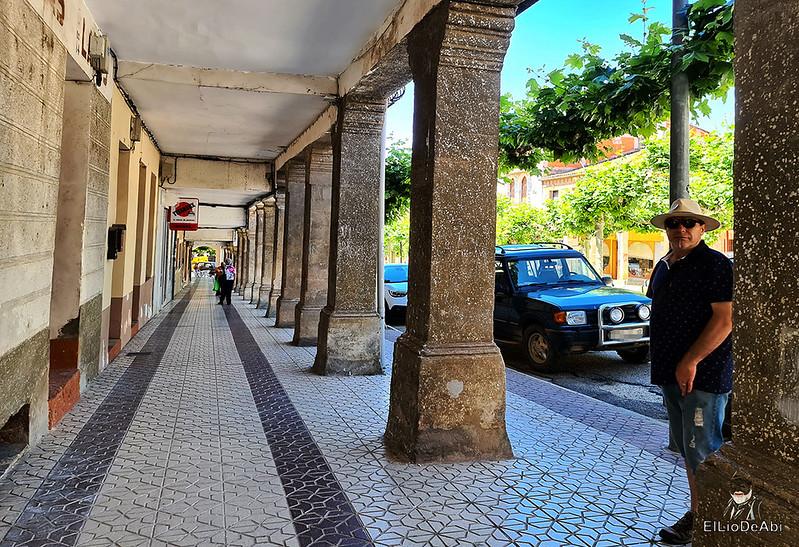 Un día en Huerta de Rey y su entorno (9)
