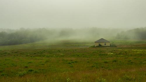 wellsreserve laudholm fog summer landscape wells maine