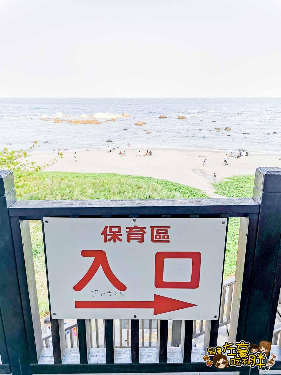 台東美食 富山餵魚-17