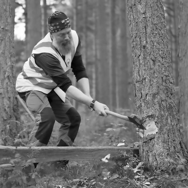 The Lumberjack's Song