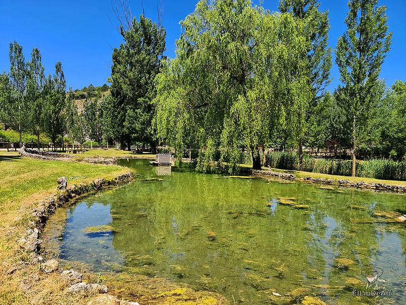 Un día en Huerta de Rey y su entorno (17)