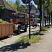 Baselstrasse Cutting Trees