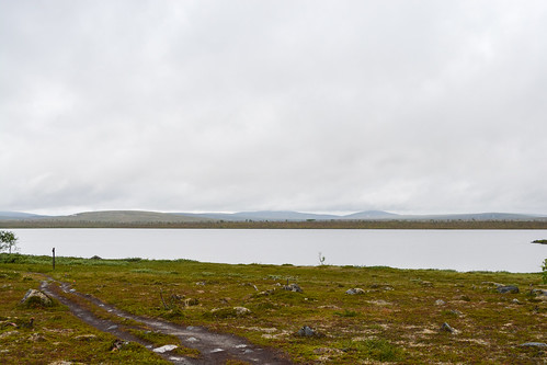 DSC_3088 | by adventurelandlapland