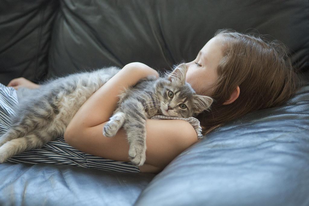 Cuddles with kitten