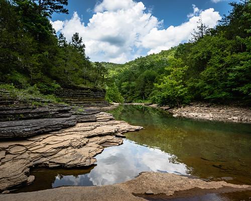 naturalstate landscape nikkor1424mm nature water wanderfar arkansas creek tree outside nationalforest forest hiking ozarknationalforest ozarks nikon rural nikond500 d500 2020 arkansasoutdoors