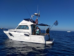 Campeonato de pesca parejas 2020