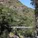 Le pont de la Liane