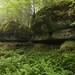 Enormes Rochers dans la Grande Lésine du Bois Billin - Frasne