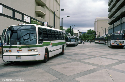 buses santarosaca goldengatetransit santarosatransit sonomacountytransit