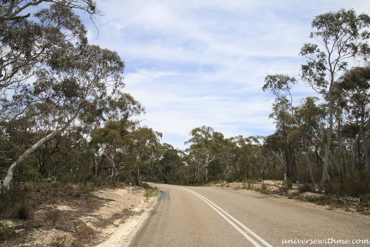 Australia Trip_024