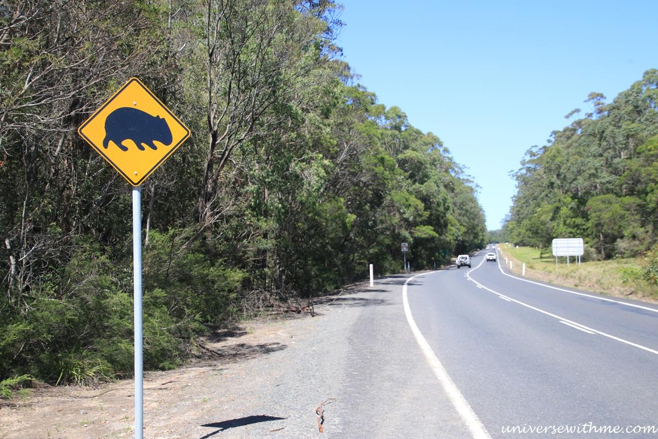 Australia Trip_018