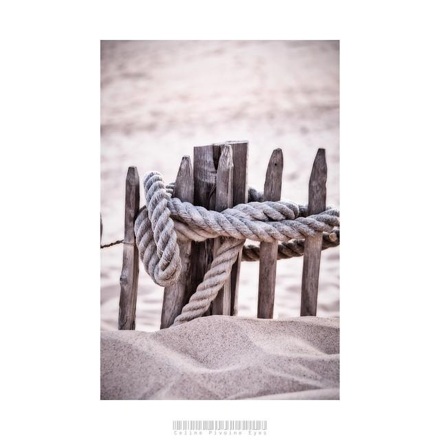 Un voyage au bord de la mer  . . . #etudiantip #artmajeur #photographe #photo #creativeentrepreneur #destinationphotographer #photographer #femmephotographe #artistsupportpledge #détail #mer #plage #corde #dune #sable 
