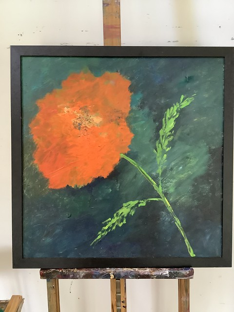 Poppy. Oil on Masonite 50x50 cm.