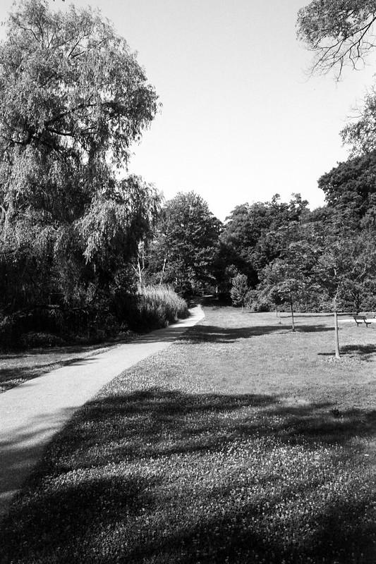 Pinewood Park Path July 2020