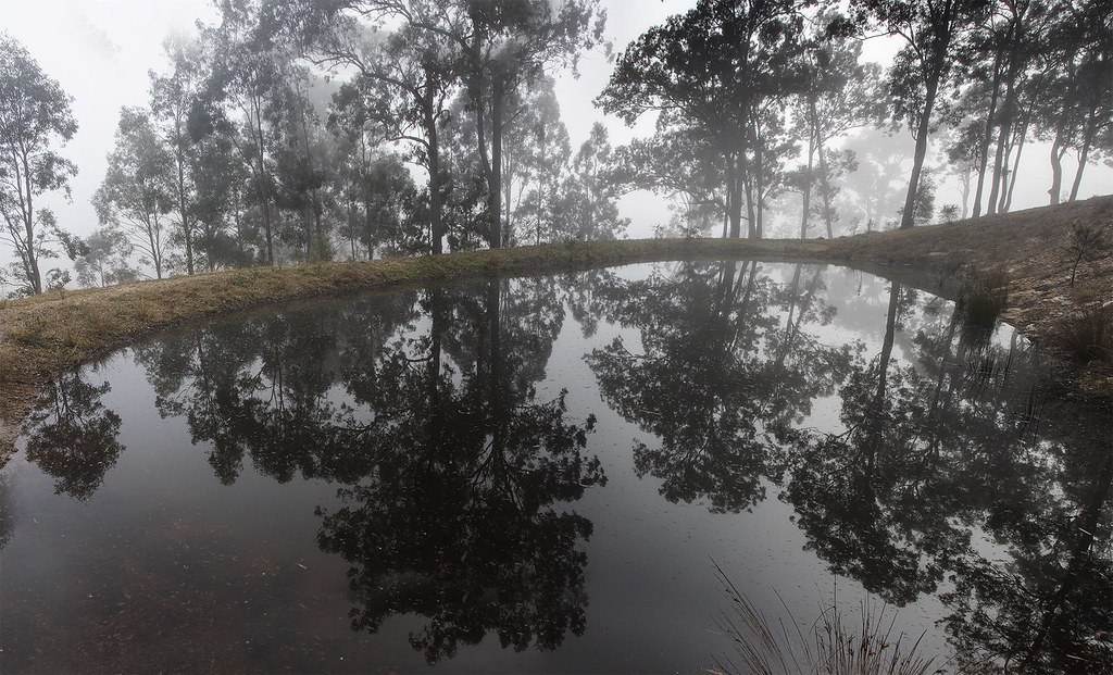 Foggy Dam at Dawn