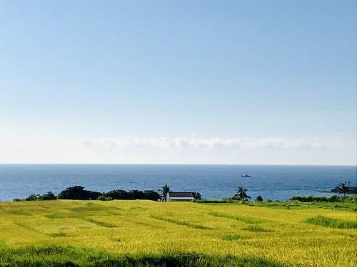 1090704~09花東段環島